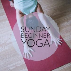 Beginner Yoga at SaKula