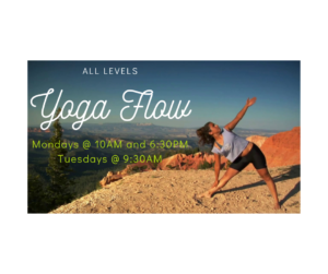 Yoga Flow - All Levels